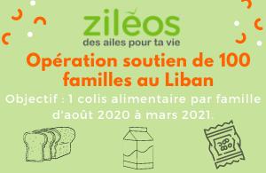 2020-09-01 - Opération soutien de 100 familles au Liban
